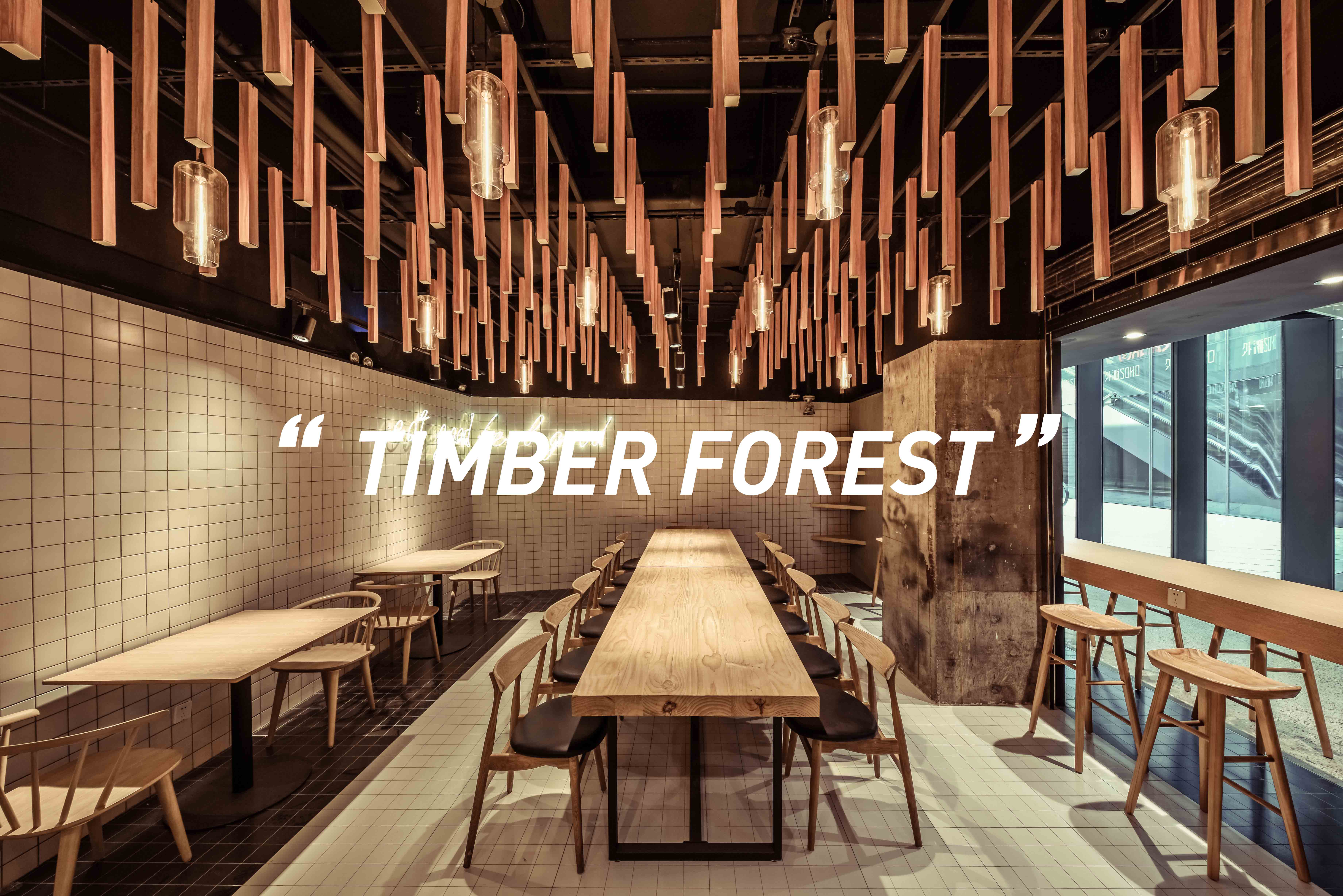 """""""Timber Forest"""""""